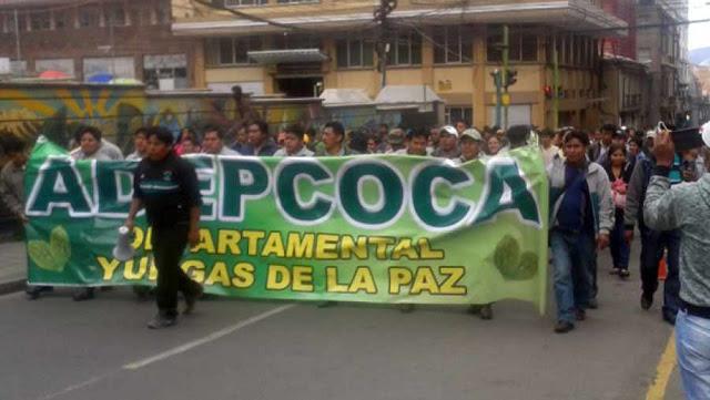 Tras el anuncio de marchas de ADEPCOCA, ex ejecutivo de CONAMAQ señala que no defenderá a la derecha
