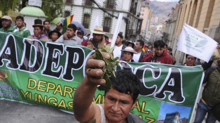 Defensoría del pueblo y la Asamblea Permanente de Derechos Humanos coordinan estrategias para excluir a menores de marcha de cocaleros