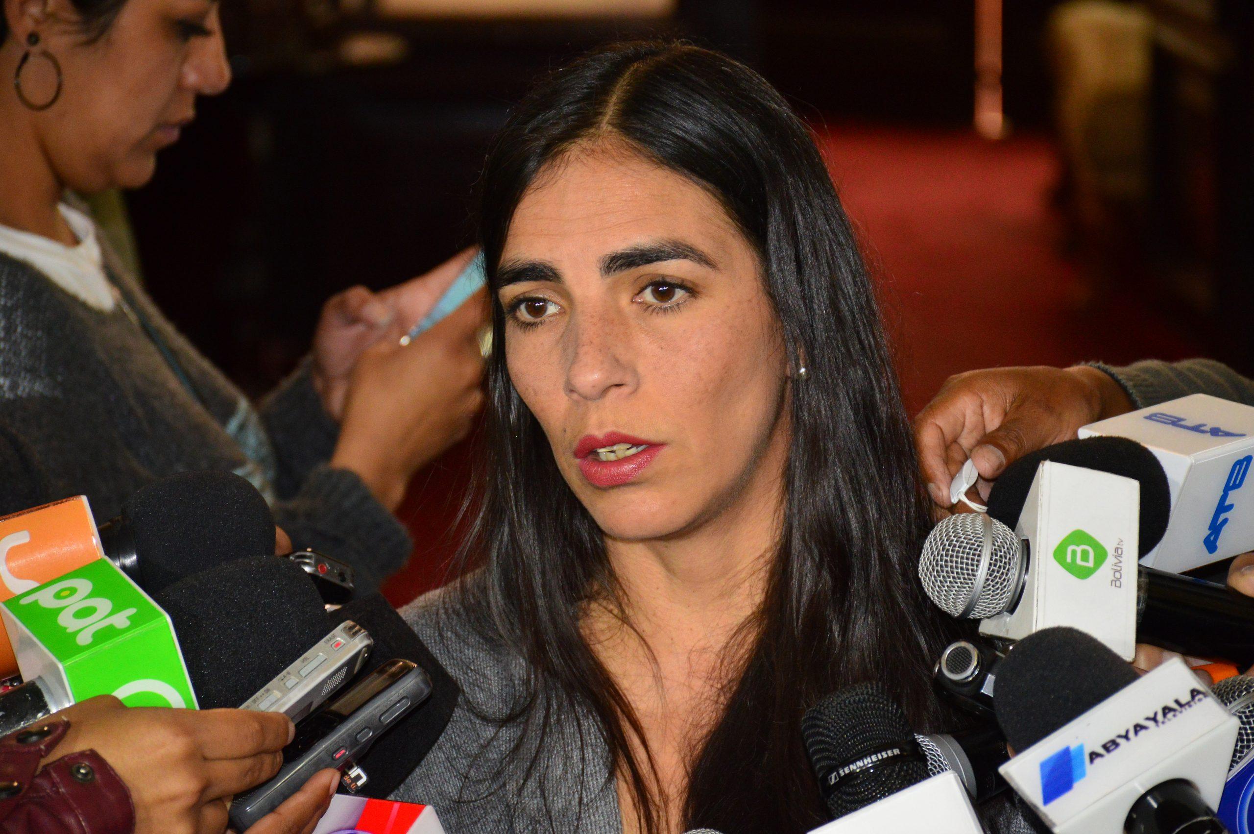 Pdta. de la Cámara Baja critica los anuncios de candidaturas presidenciales de Carlos Mesa y Víctor Hugo Cárdenas
