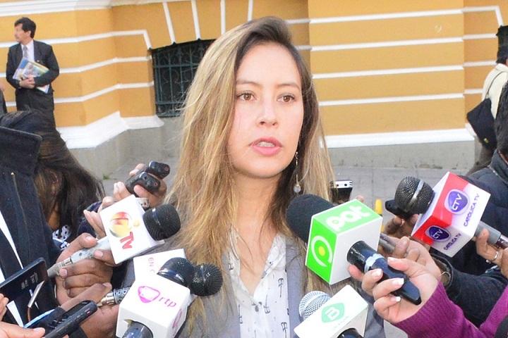 20 expresidentes latinoamericanos envían una carta a la OEA y a la UE por posible ruptura democrática en Bolivia