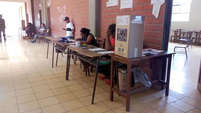 OEA observa ausentismo en las elecciones primarias y un alto índice de votos nulos y blancos