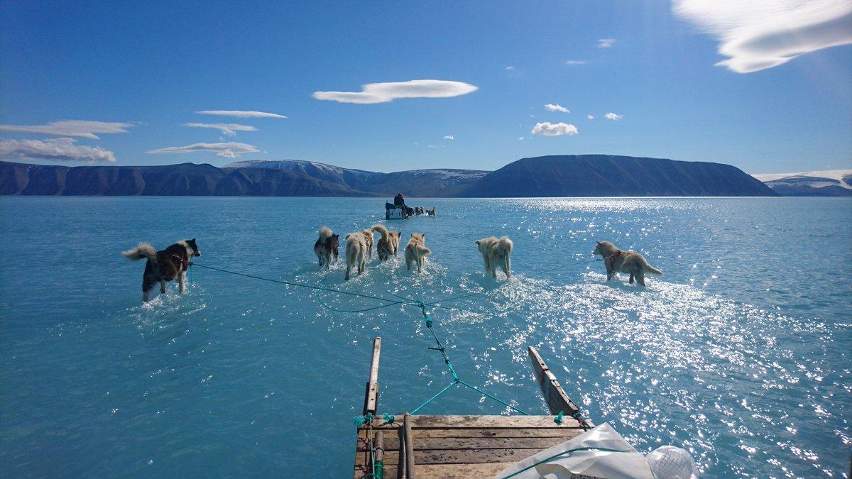 Fotografía muestra derretimiento del hielo marino en Groenlandia