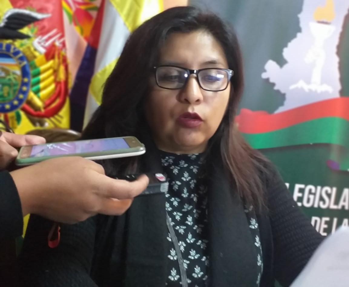 Asambleísta del MAS denuncia ante el TSE que 26 funcionarios de la gobernación son candidatos por el Movimiento Tercer Sistema