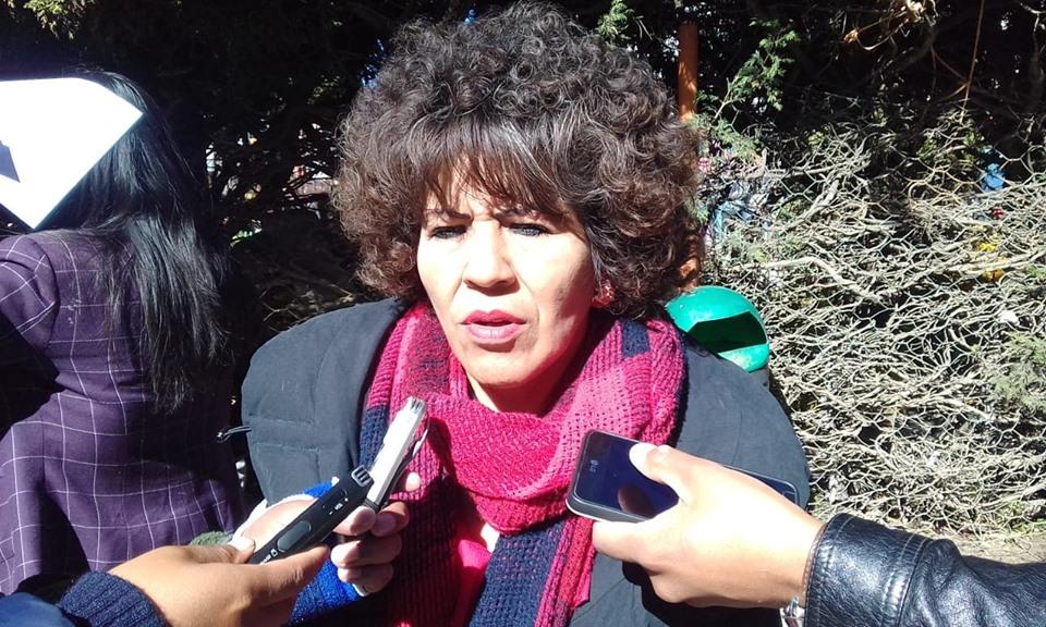 Fanny Nina renuncia como candidata a diputada por Comunidad Ciudadana