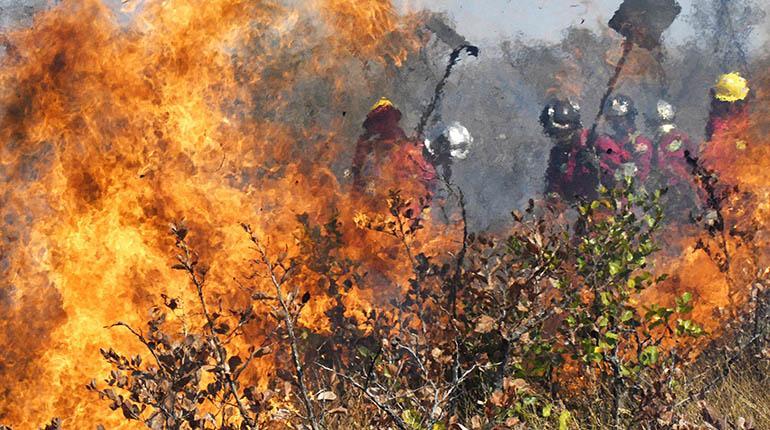 Asamblea en Roboré exige al Gobierno declarar desastre nacional por los incendios en Chiquitanía