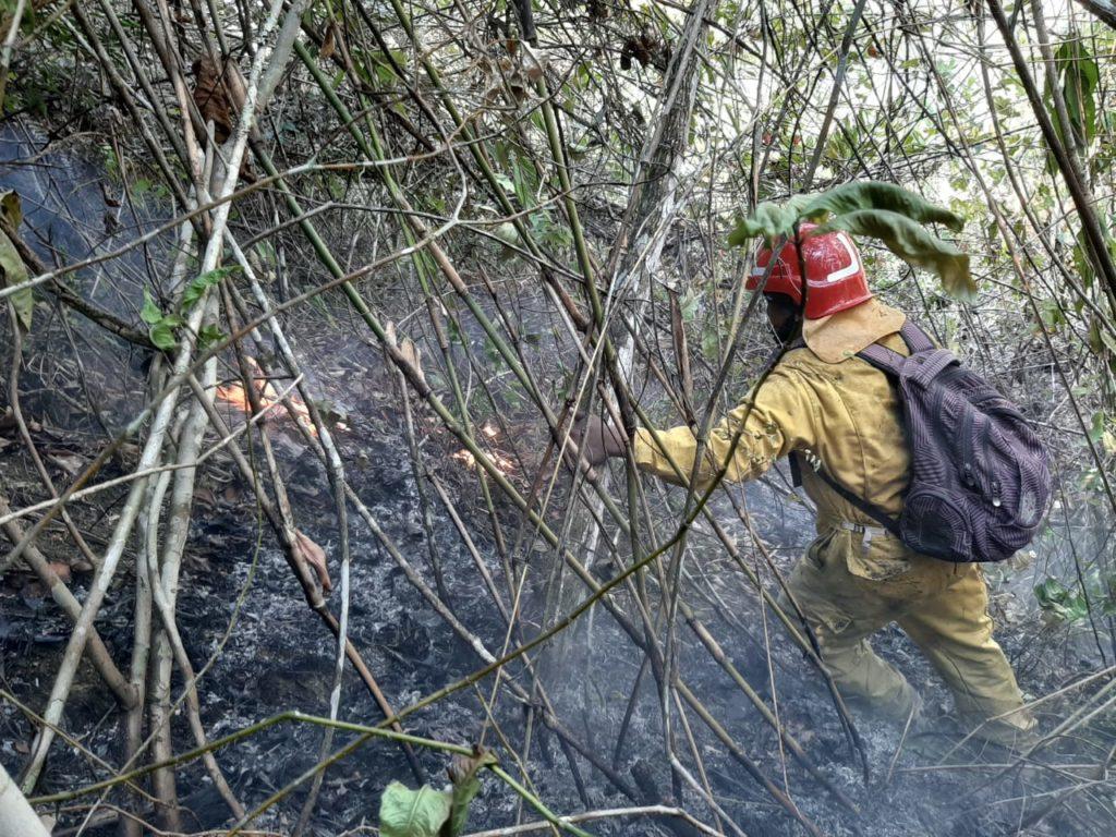Oposición exige al Gobierno sofocar los incendios en el parque Madidi empleando la logística usada en la Chiquitanía