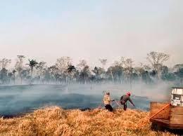 El turismo nacional pierde $us 2 millones por los incendios