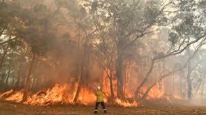 Se declara estado de emergencia en Australia ante incendios forestales