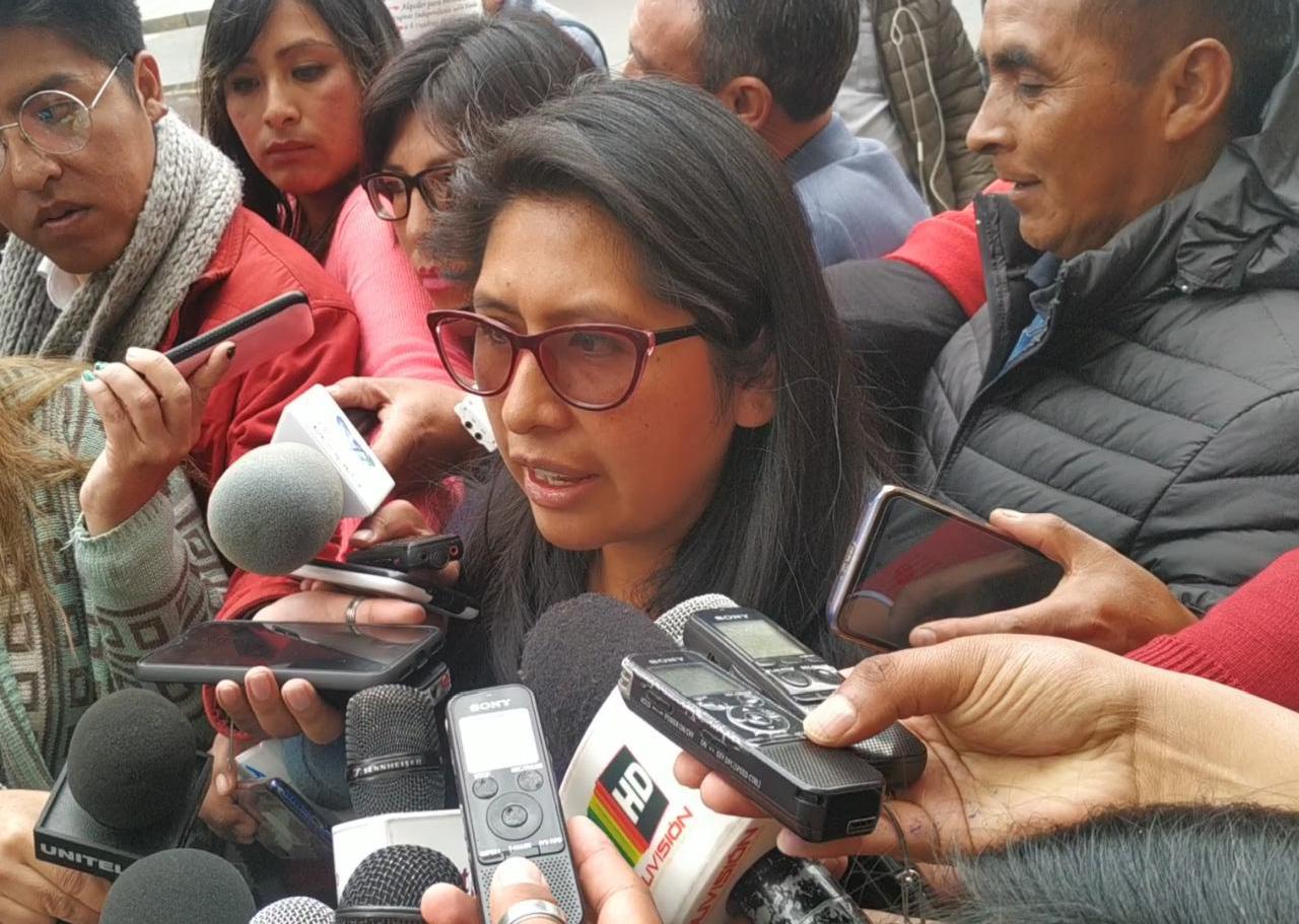 MAS asegura que el informe de la OEA no habla sobre un fraude electoral sino sobre irregularidades en el proceso electoral