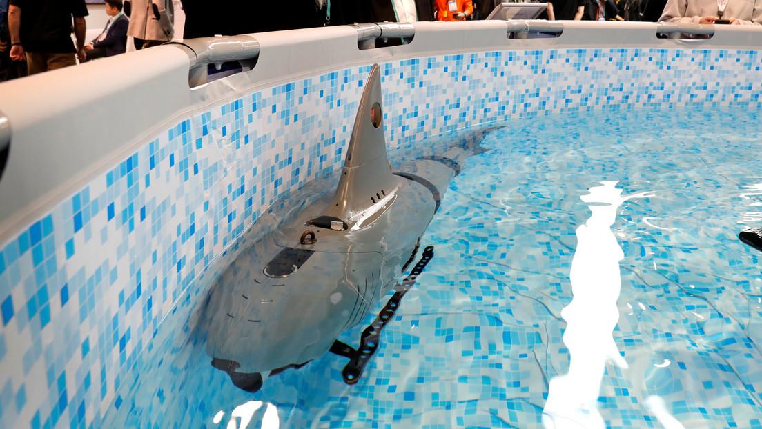 Crean robot submarino para fines militares que llama la atención por su atractivo aspecto