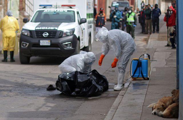 Ministerio de Salud reporta 73.534 casos de COVID-19 a nivel nacional