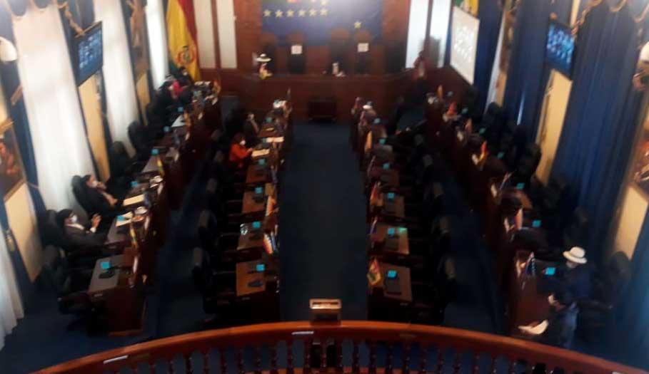 """Cámara de Senadores aprueba el """"Bono Contra el Hambre"""" de Bs 1.000"""