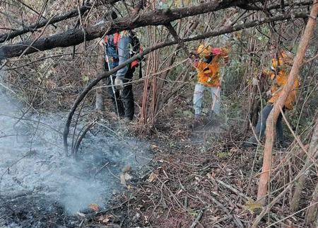 Ministerio de Medio Ambiente presenta denuncias por incendios forestales en Samaipata y San Matías