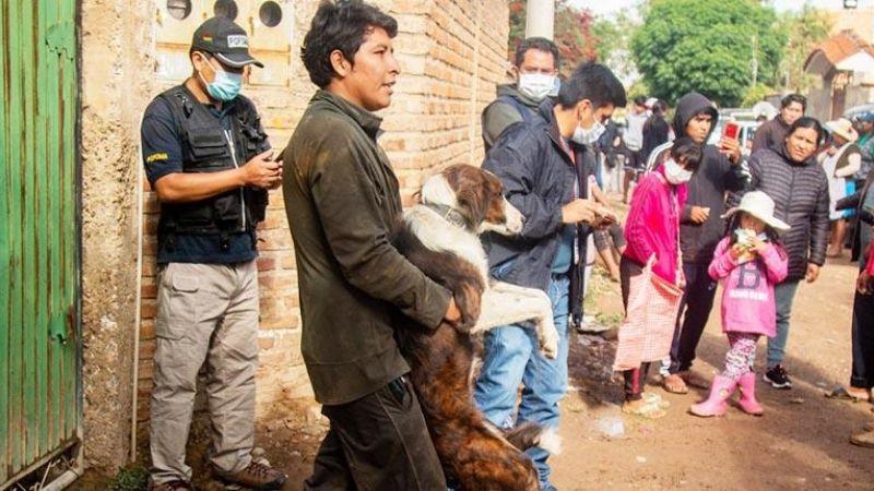 Aprehenden al dueño de uno de los perros que atacó a una mujer en Cochabamba