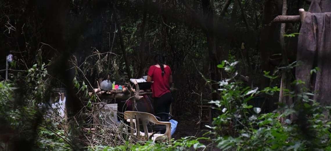 Presentan denuncia por presunto avasallamiento en el Jardín Botánico de Santa Cruz