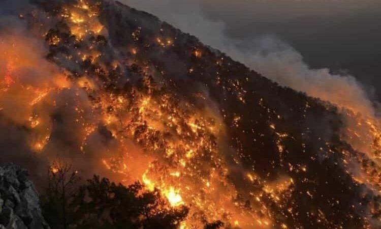 Bomberos lograron controlar 60 incendios en Turquía