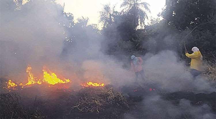 Fegasacruz desmiente a la ABT sobre la ampliación de plazos para quemas controladas