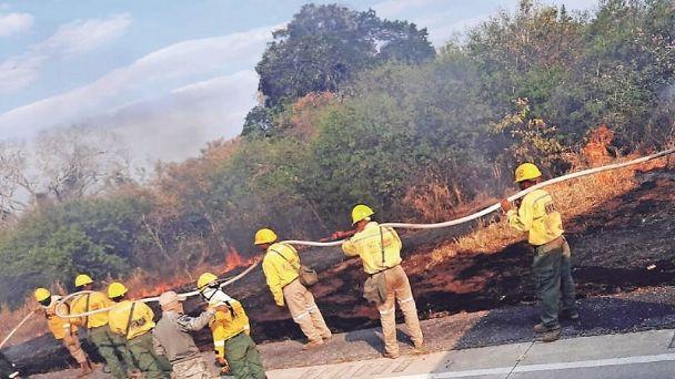 Incendios en Santa Cruz afectaron 15 mil hectáreas