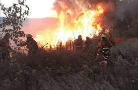 Fuego arrasa con 5.791 hectáreas en San Matías
