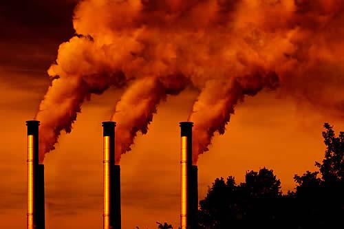 """14.000 científicos advierten que los signos vitales de la Tierra empeoran a un ritmo """"preocupante"""""""