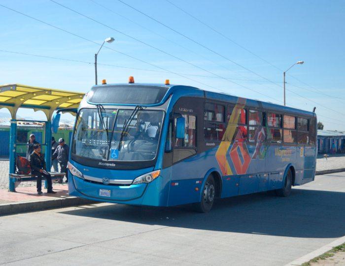 13 de los 60 buses de Wayna Bus están en funcionamiento debido a falta de presupuesto para el mantenimiento