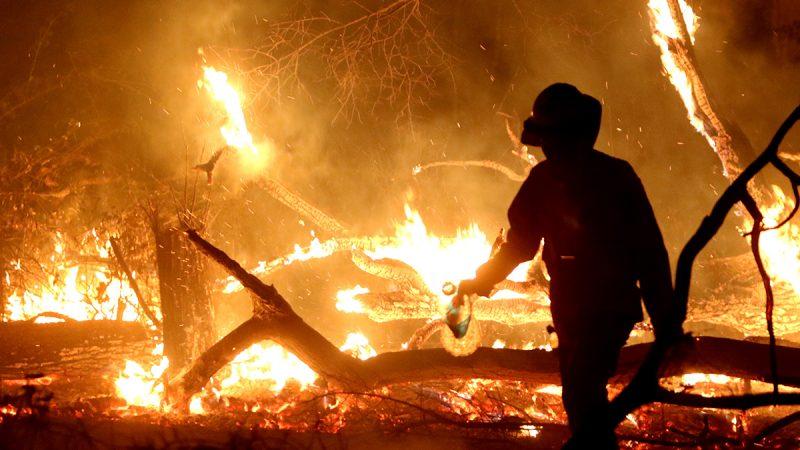 Policía despliega 200 efectivos para apagar los incendios en la Chiquitanía