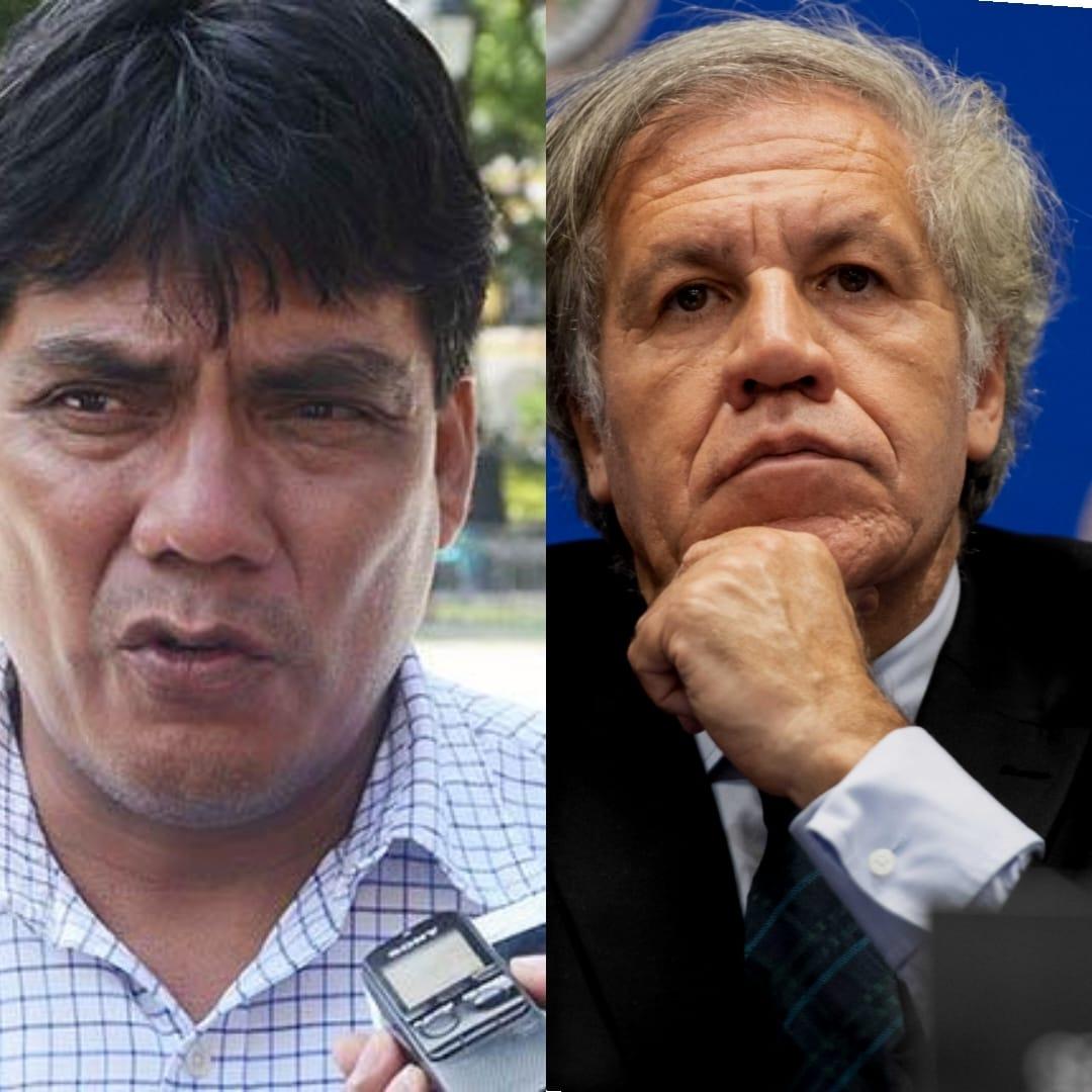 """Diputado del MAS llama """"enfermo mental"""" a Almagro"""