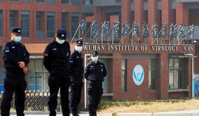 Revelan que el laboratorio de Wuhan planeaba mejorar los virus de los murciélagos para estudiar sus riesgos en humanos