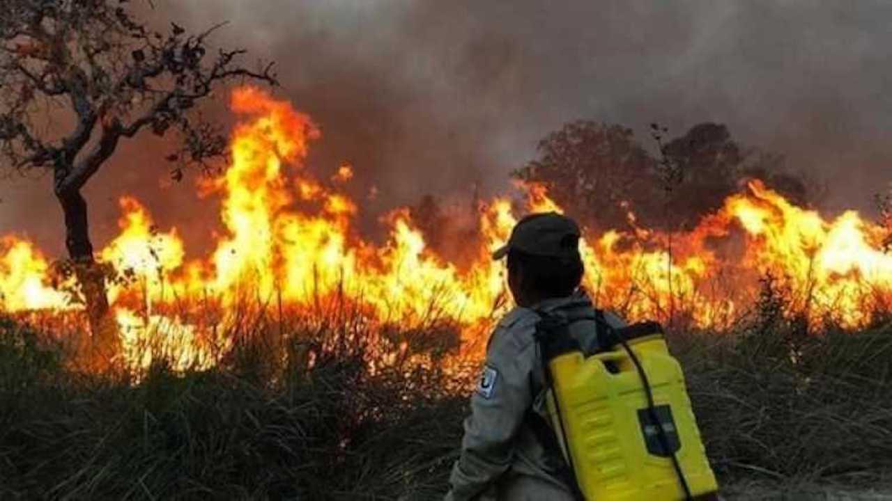 Incendios en Santa Cruz afectan a 8 municipios y más de 1 millón de hectáreas