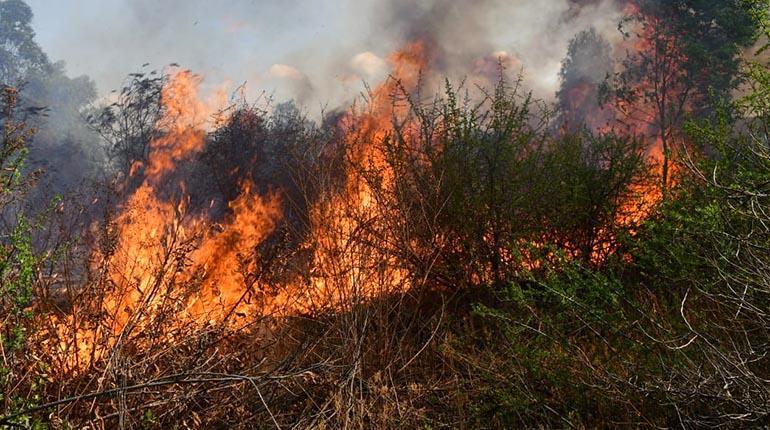 Reyes Villa asevera que el incendio en la laguna Alalay fue provocado y anuncia investigaciones